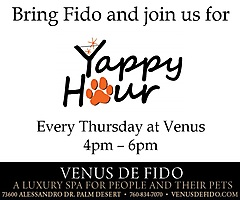 "Bring Fido and join us for ""YAPPY Hour"" Thursdays at Venus De Fido in Palm Desert!"